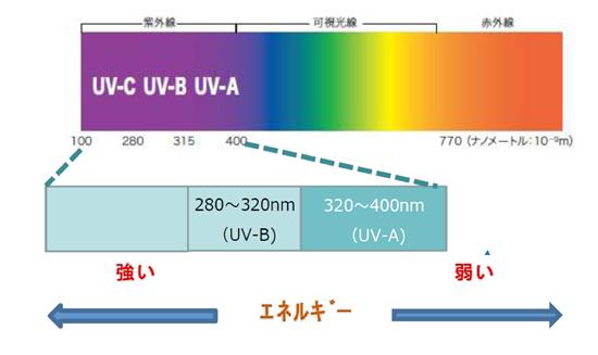 UVB(紫外線B波)とは…